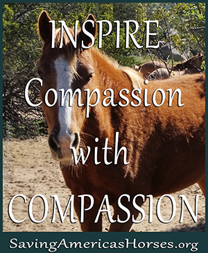 Inspire Compassion with Compassion